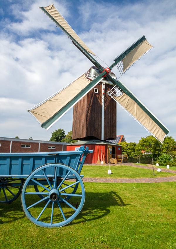 Bockwindmühle Dornum_ganz